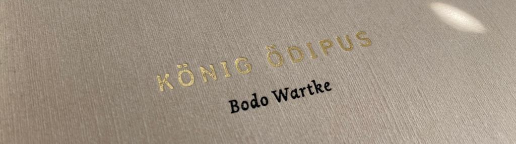 Ausschnitt des Covers der Wartke-Adaption, zu sehen ist der Schriftzug des Titels